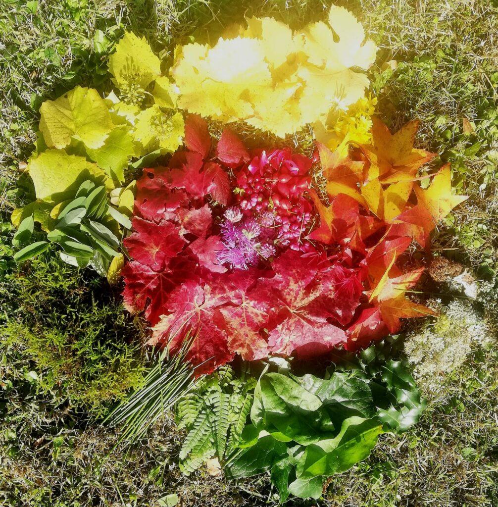 Land art d'automne multicolore